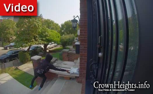Porch Thief Terrorizing Crown Heights Street